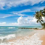 Tax Haven offshore barbados