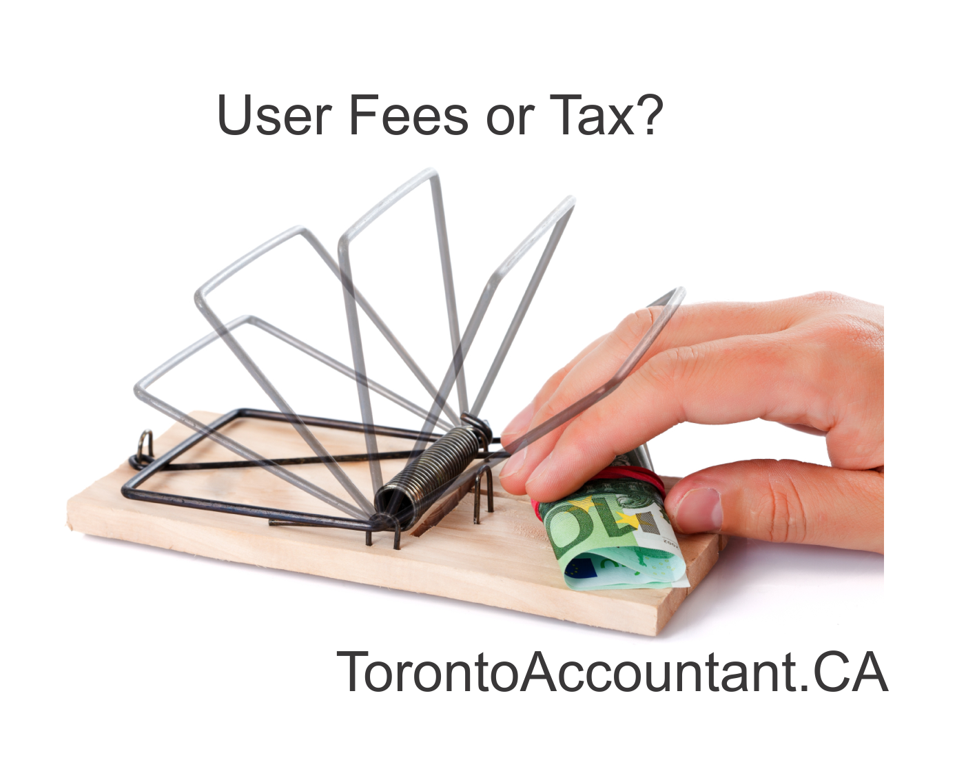 Accountant Fees Canada